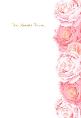 Eleganza fiori cornice di rose colorate. Composizione con fiore fiori rami e lettere con posto per il testo su sfondo bianco.