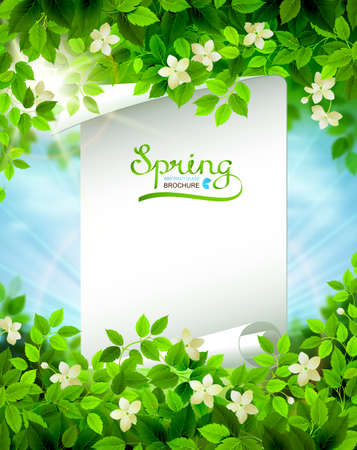 Spring branches with fresh green leaves. Season background framed by white floral elements on the shining blue sky. Paper banner with word Spring.