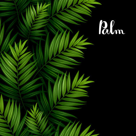 pattern: Tropical palm green leaves seamless pattern border on the black background.