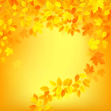 autumn bright color background decorated by yellow, orrange hanging season leaves.