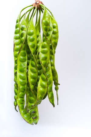 Stink beans isolated on white photo