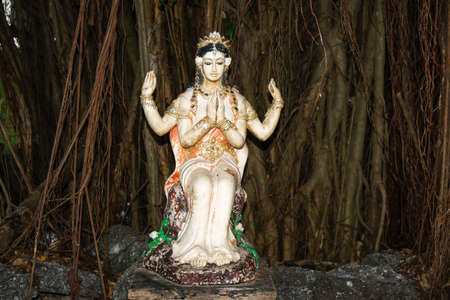 parvati: The image of Parvathy, Hindu Goddess, situated at the root of banyan tree. Stock Photo