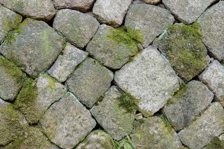 Close up of stone-wall background with moss and creeper