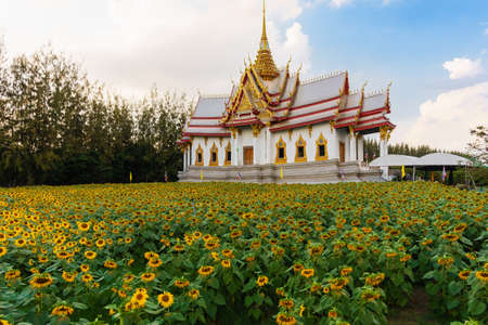 The building in Non Kum temple or also known as Wat Sorapong, a famous Buddhist temple in Nakhon Ratchasima Province, Thailand, with sunflowers are in the foreground.