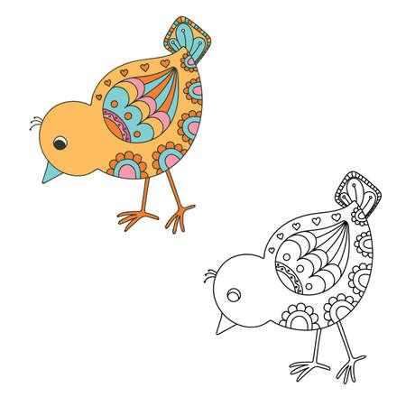 chick: Hand drawn decorative chick. Vector illustration Illustration