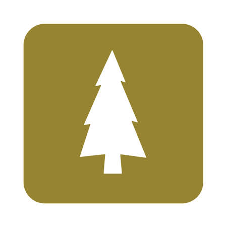 evergreen trees: flat icon  Fir Trees
