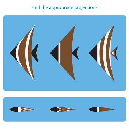 Logical task. Find the appropriate projections. Vector illustration Çizim