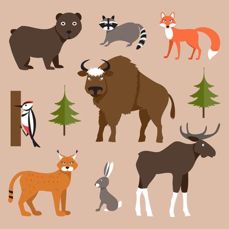 animales del bosque: Vector colecci�n de iconos e ilustraciones animales del bosque Vectores