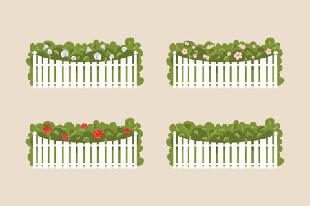 shrubs: Various flowering shrubs and garden behind the white fence Illustration