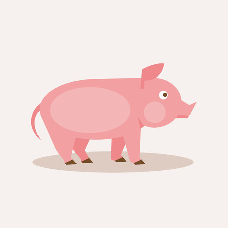 Flat pink pig illustration for your design