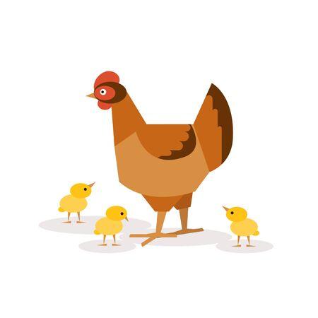 baby chicken: Illustration of chicken walking with her chickens Illustration