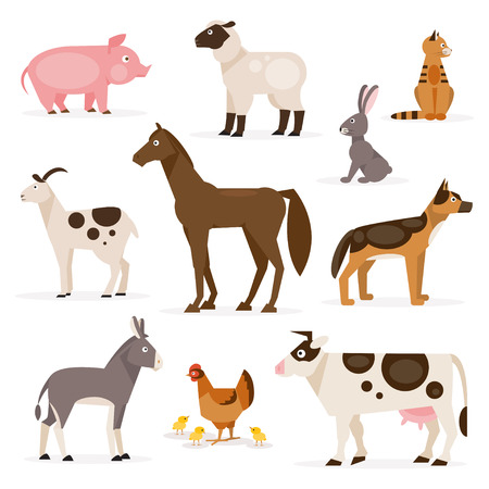 A collection of farm animals on the white background Stock Illustratie