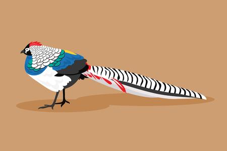Illustratie van diamant fazant op een bruine achtergrond