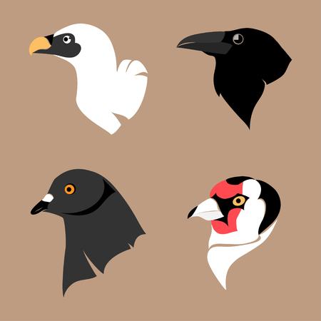 goldfinch: Illustration isolated stylized heads of various birds Illustration