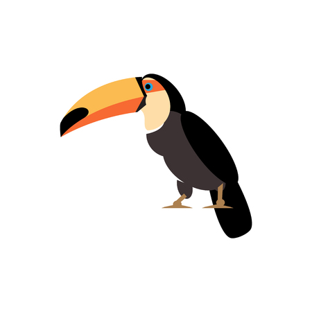 Illustration toucan parrot on a white background 向量圖像
