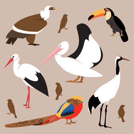 Collection of various birds isolated on a brown background Illustration