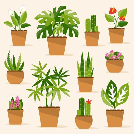 Een verzameling van kamerplanten en bloemen Stock Illustratie