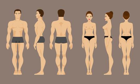 cuerpo perfecto femenino: anatomía masculina y femenina. Frontal, posterior y laterales vistas Vectores