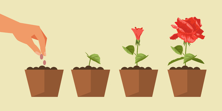The process of planting and growth of plants. Gardening. Vector illustration Vettoriali