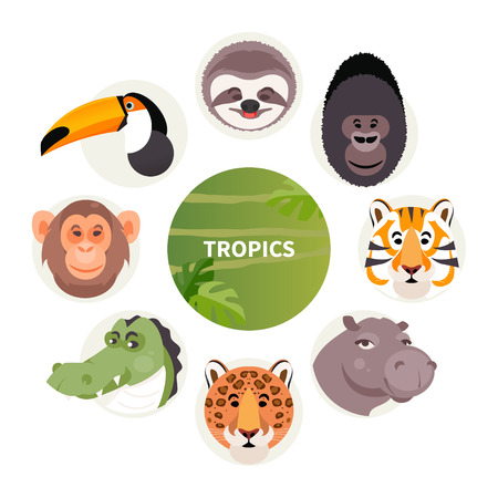 Set of cartoon animals of rainforest and jungle. Vector illustration