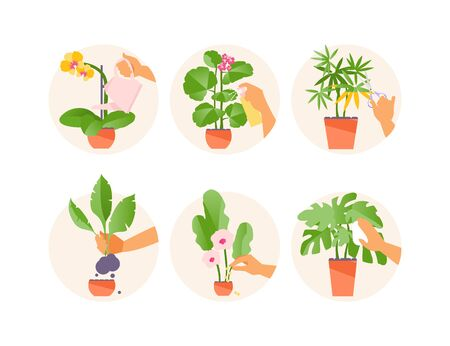 Basic rules for caring for flowers. Watering, spraying, cutting, transplanting, fertilizing cleaning Vector illustration