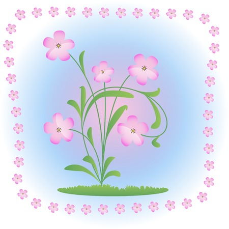 spring came and blossomed delicate pink flower Vector
