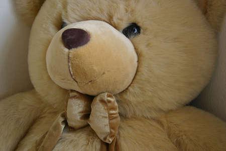 Happy Bear Stock Photo - 252281