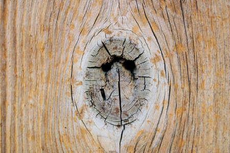 knotty hole Фото со стока