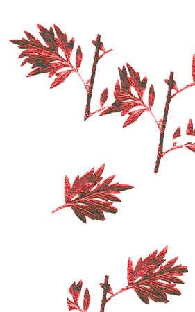 葉の品揃え