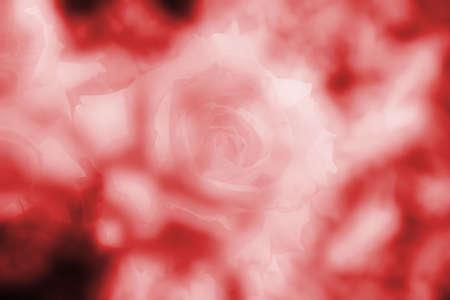 fluff: Red Pelusas
