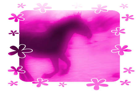 Pink Horse photo