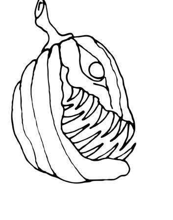 calabaza caricatura: Cartoon Pumpkin