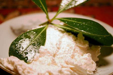 Crema e Leaf Archivio Fotografico - 4137719