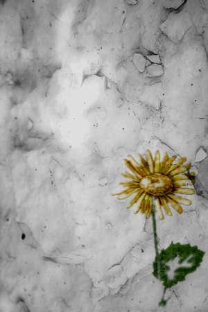 3d effect sunflower paper