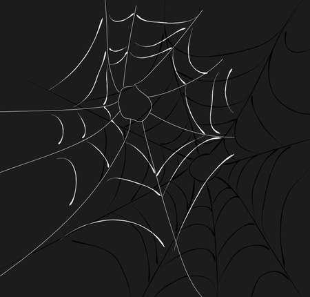 cobwebs: Two cobwebs Stock Photo