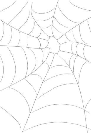 Web d'araignées Banque d'images - 1772110