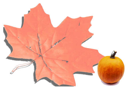 Maple Leaf and pumpkin photo