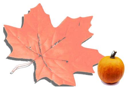 Maple Leaf and pumpkin photo
