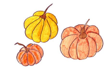 Gourds Trio