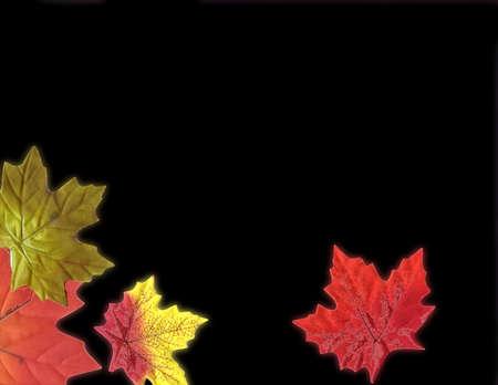 fallen: Holiday Fallen leaves