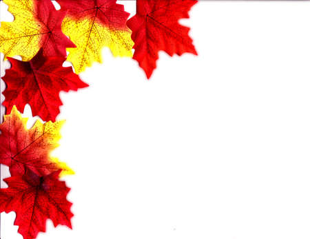 Leaves Cascade Stock Photo - 1831853