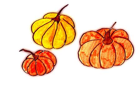 Three pumpkins hand drawn photo