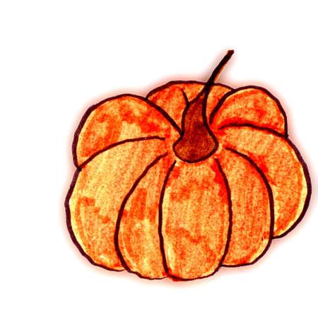 hand drawn gourd photo