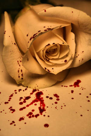 morbid: blood splattered rose Stock Photo
