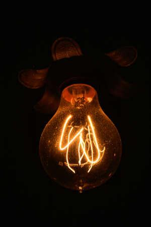 Coil Style Bulb