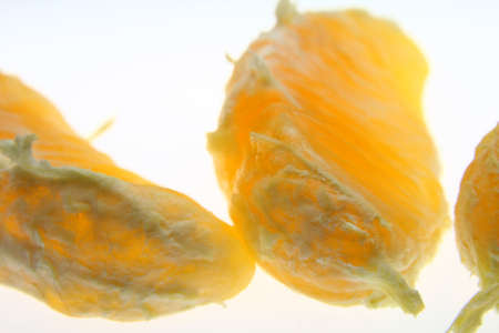 オレンジ セグメント 写真素材