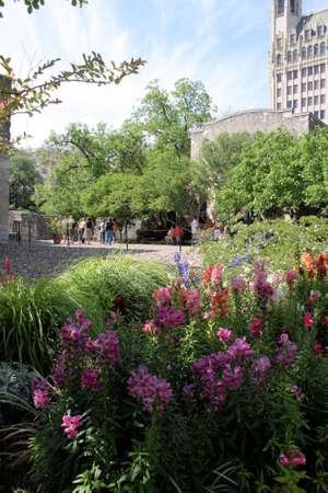 Alamo Garden photo