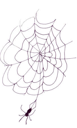 Spider and Web Imagens