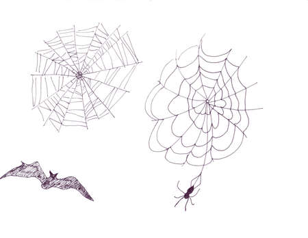 Webs and Bat