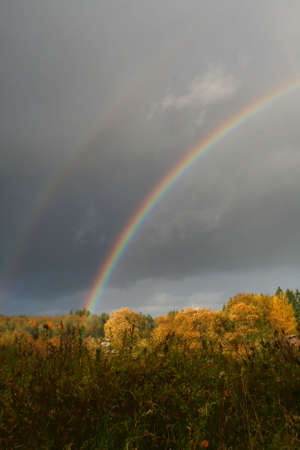double reed: Double Rainbow Stock Photo